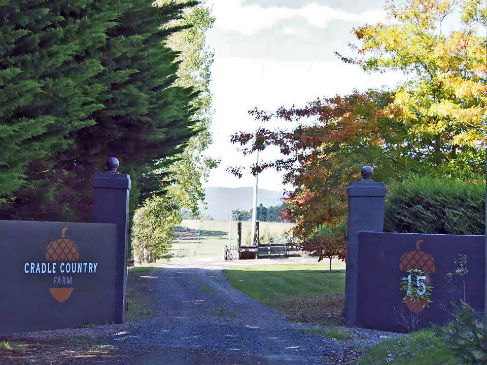 Entrance-to-the-farm.jpg