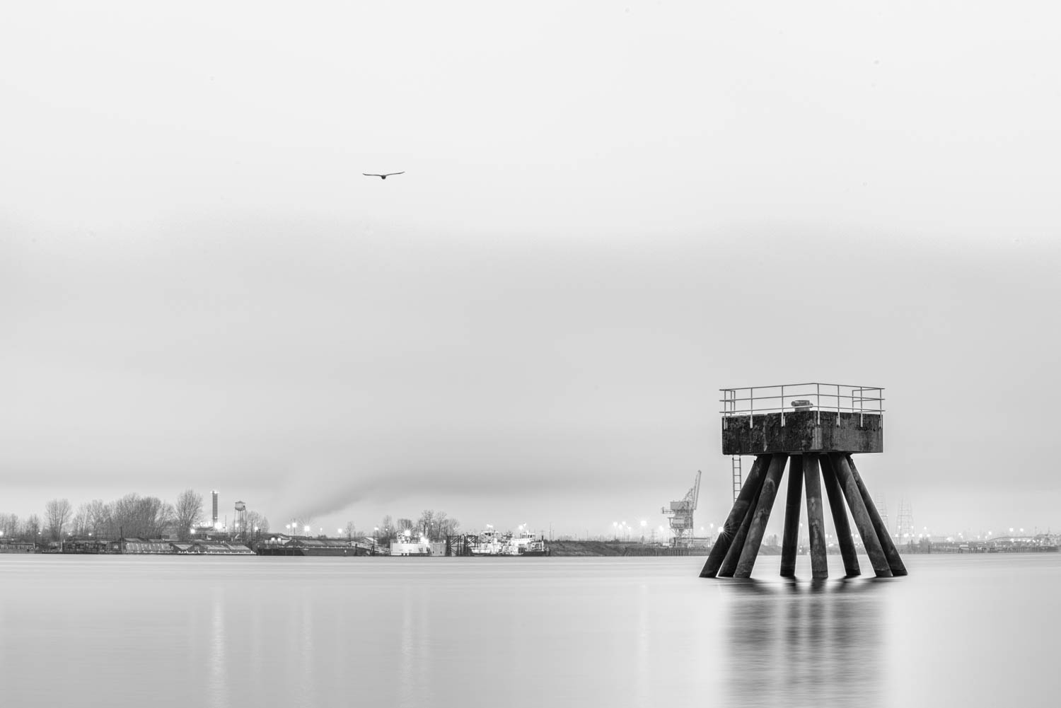 Watchtower Long Exposure with Bird-2.JPG