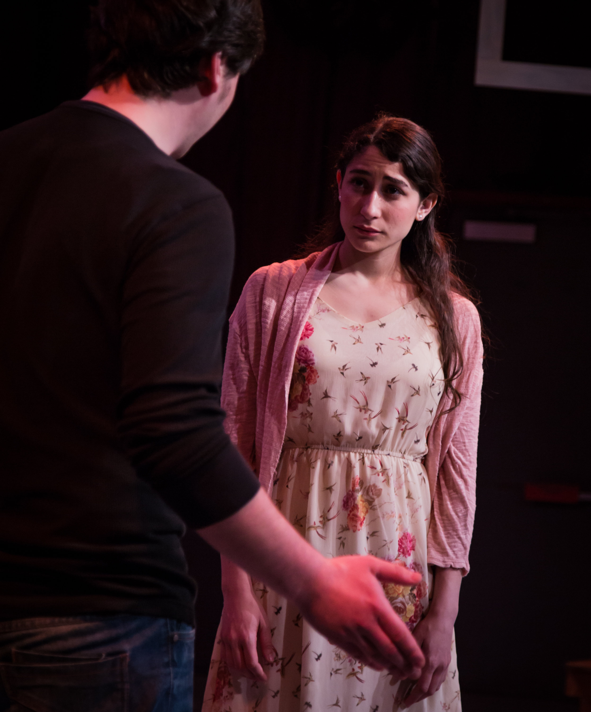 """Ophelia Theatre Group's """"The Seagull"""" directed by John Robert Hoffman"""
