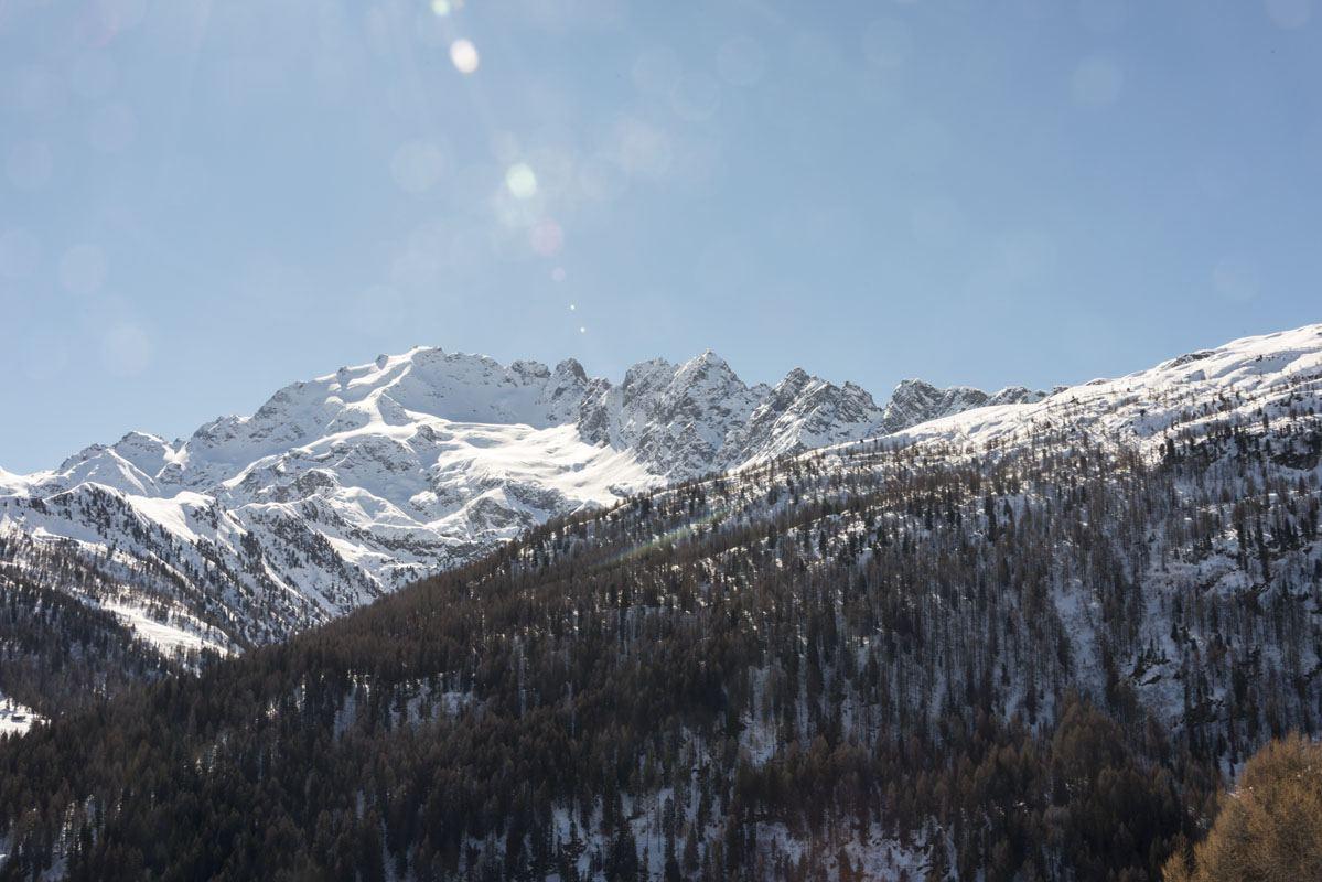 Valtellina_dogsled_Photo_126.jpg