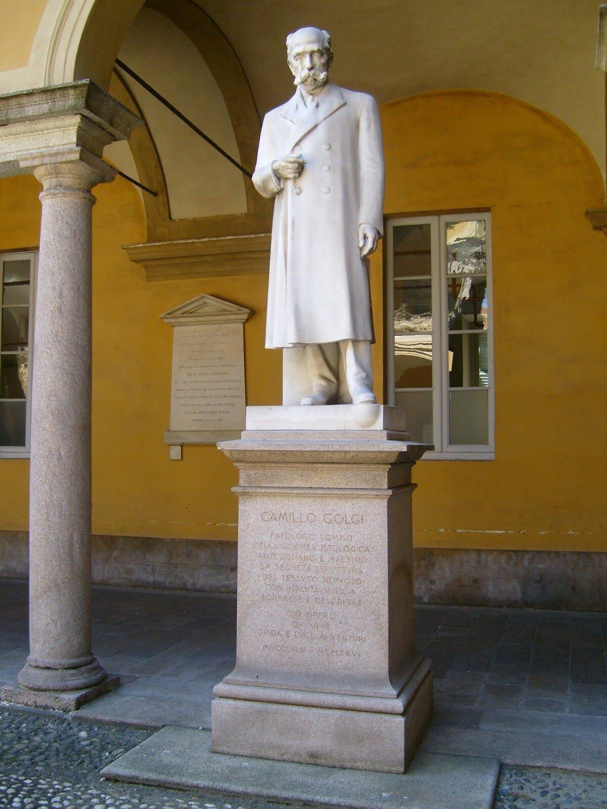 Camillo_Golgi's_statue,_Pavia,_Italy_1.jpg