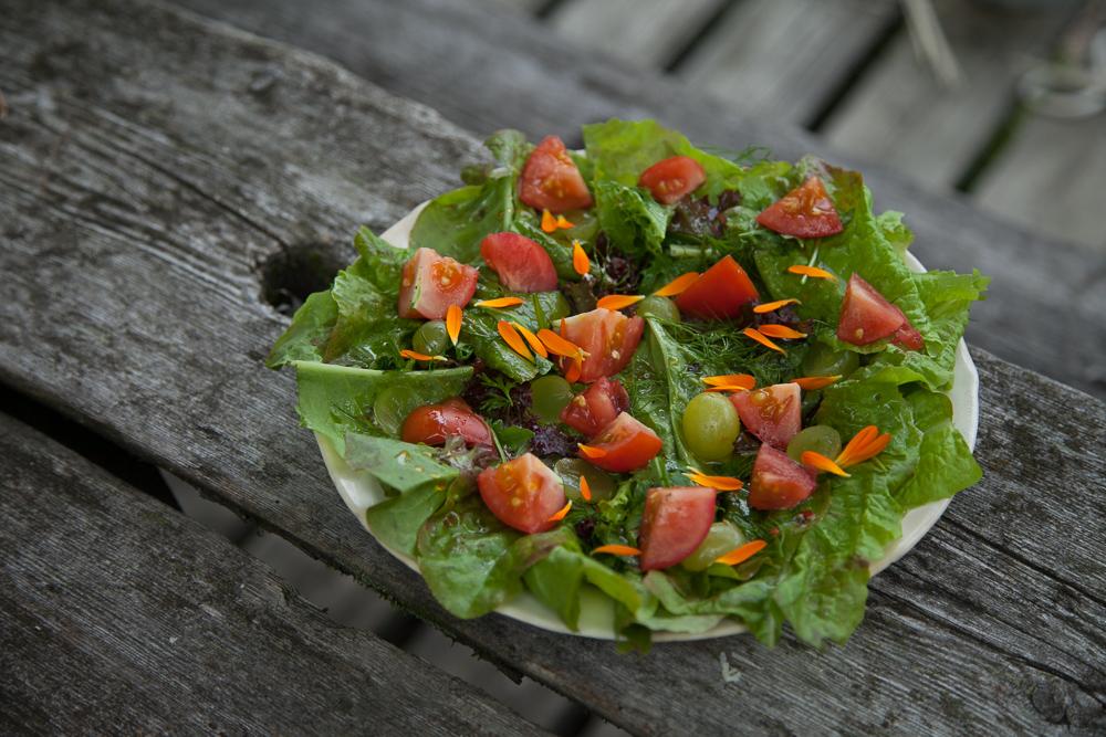 salaatti ruokablogi