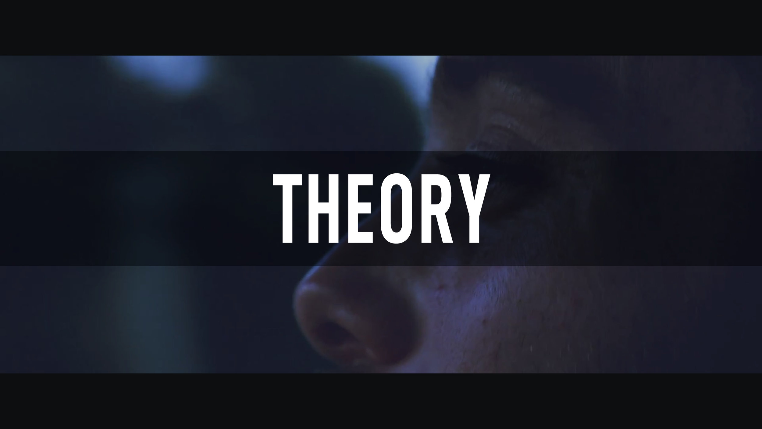 Theory // Can't Settle In