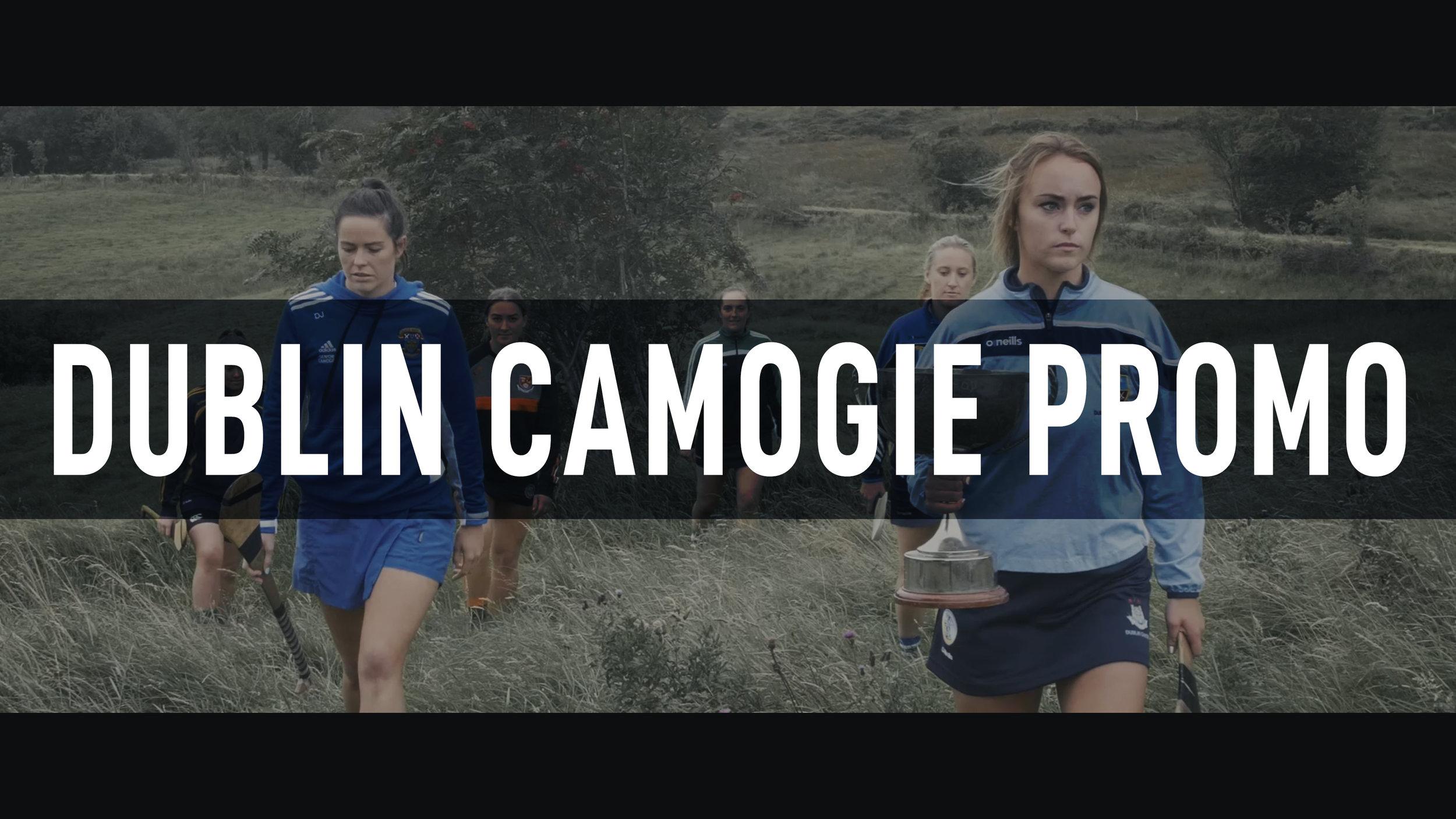 Dublin Camogie Championships 2019