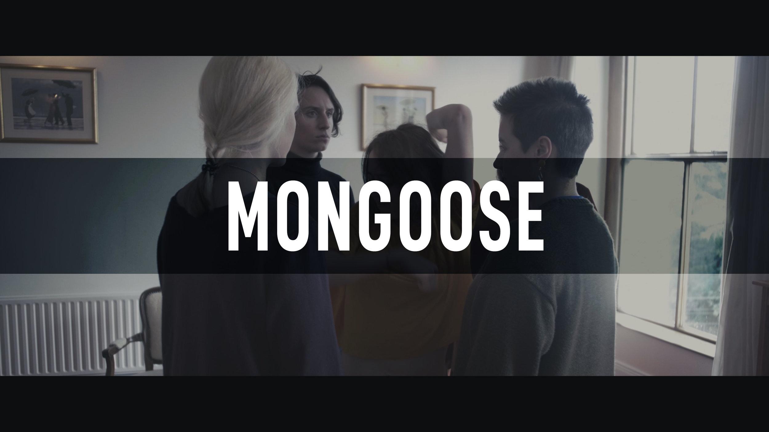 Mongoose // Joie De Vivre