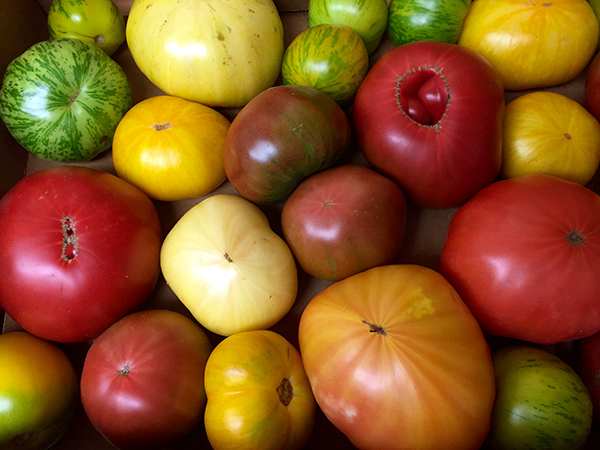 local heirloom tomatoes.jpg