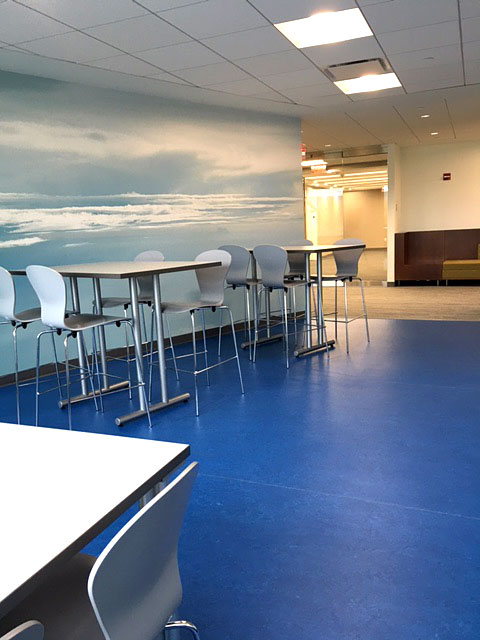Commercial Interior Design for Office, Training Room and Cafe