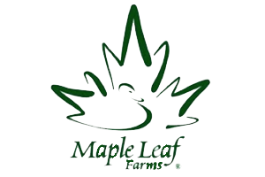 Maple Leaf.png