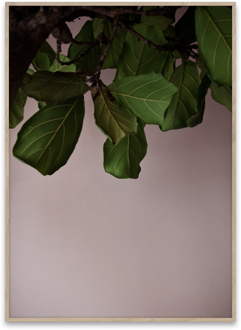 0000_Norm_Architects_Green_leaves_50x70-781x1070.png