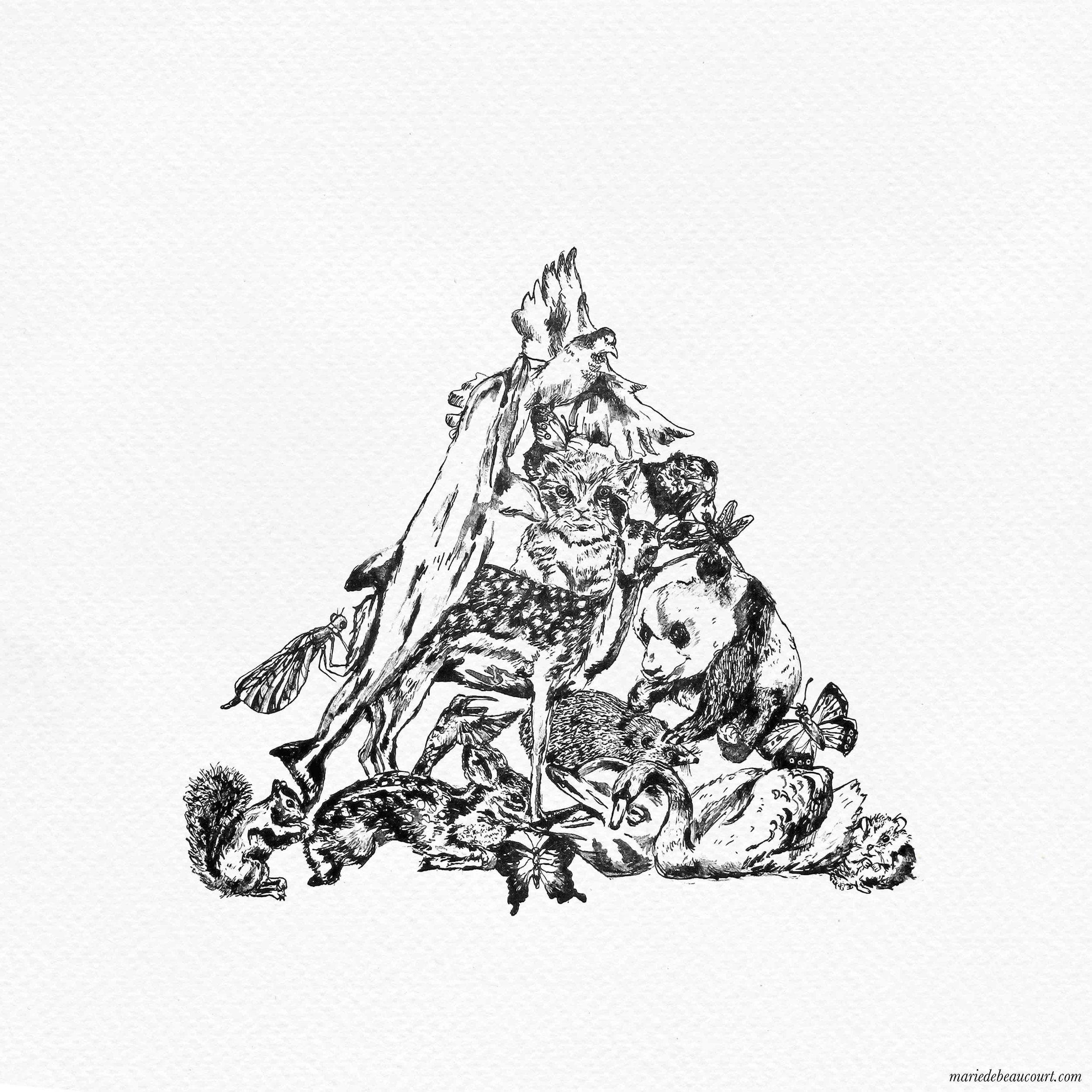 marie-de-beaucourt-illustration-animalia-triangle-preys-2017-web.jpg