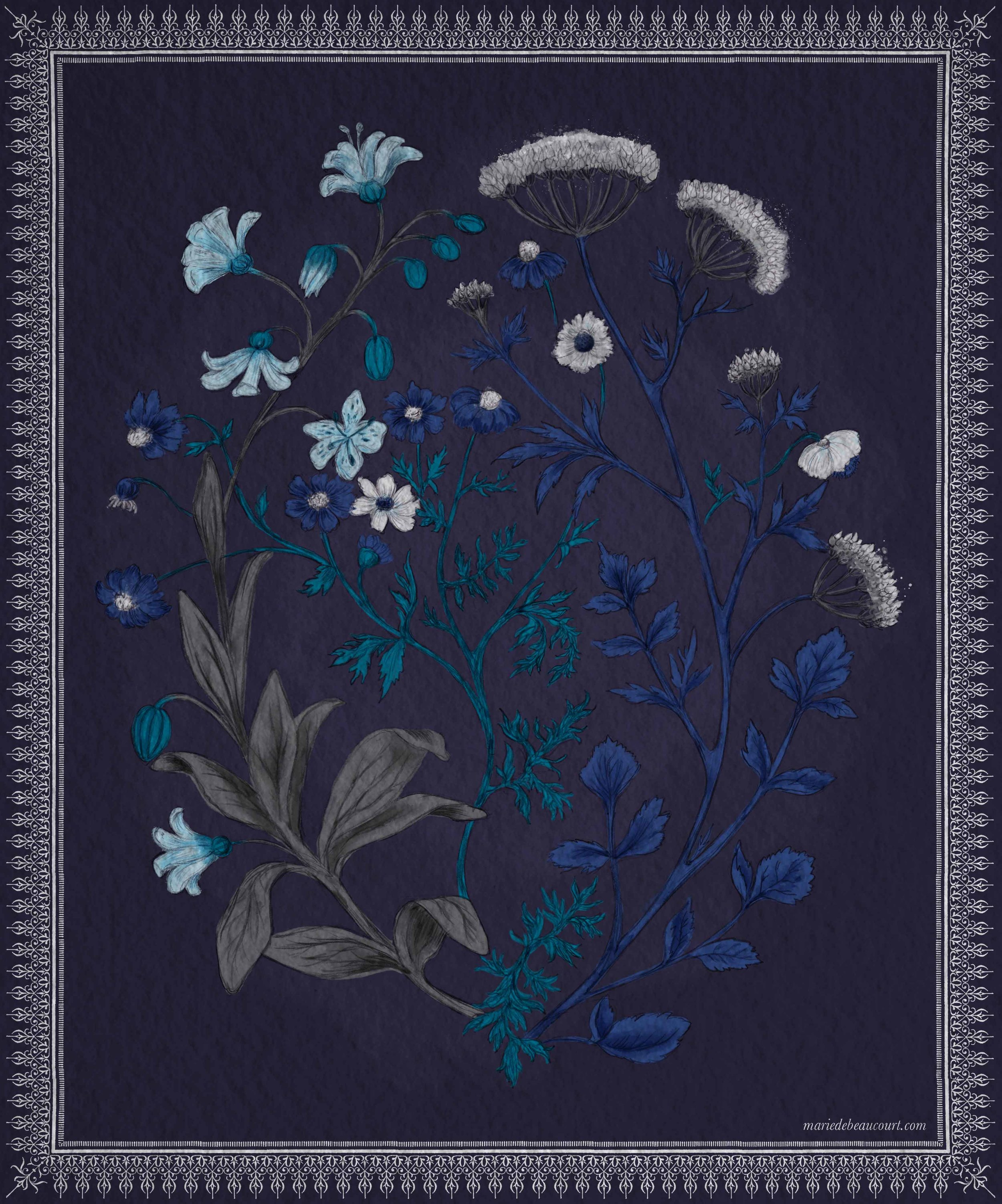 Marie-de-beaucourt-2018-Botanic-illustration-Bouquet-Bleu-WEB.jpg