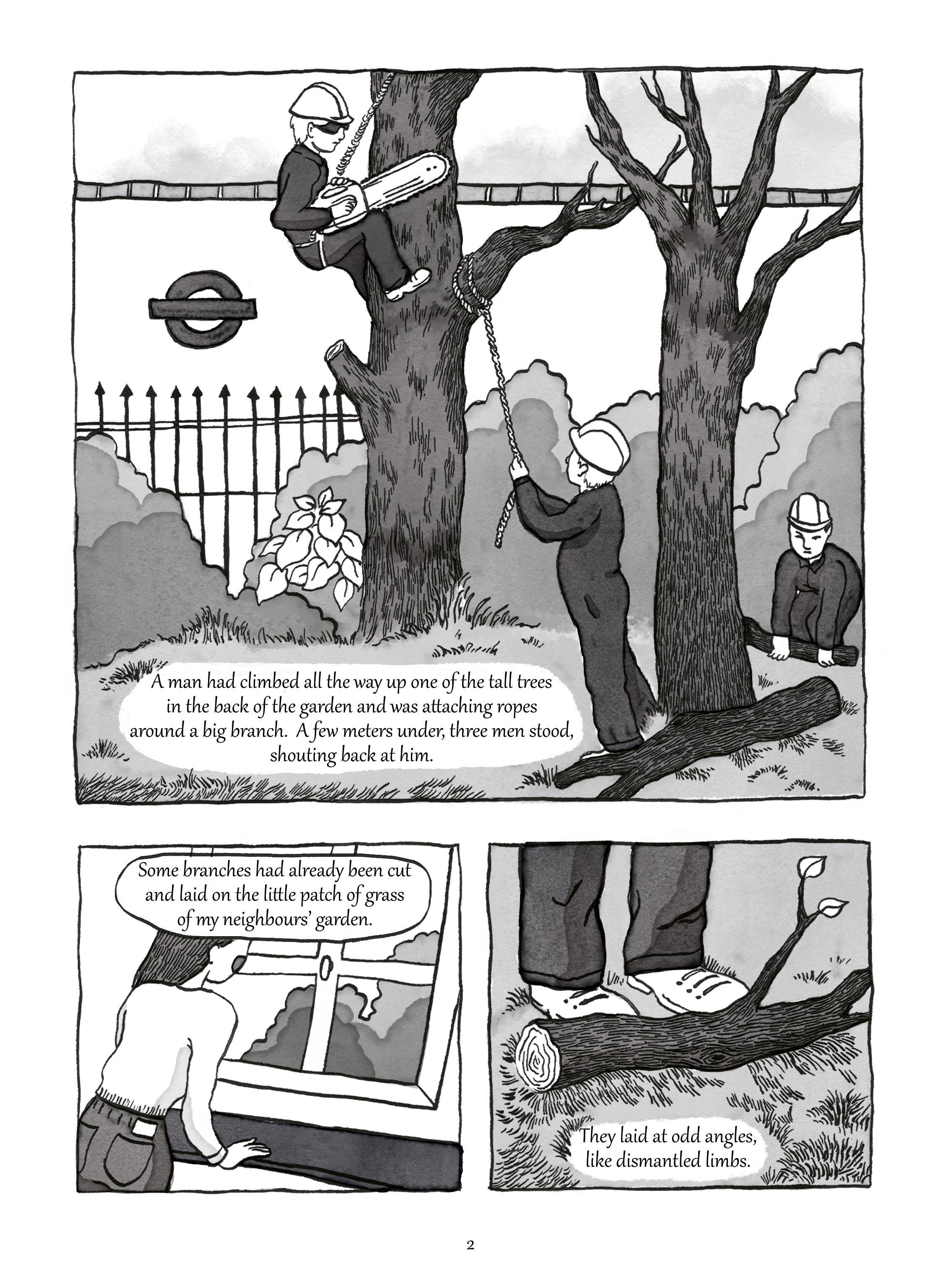 Marie-de-Beaucourt-Illustration-Two-Trees-Graphic-Novel-page2.jpg