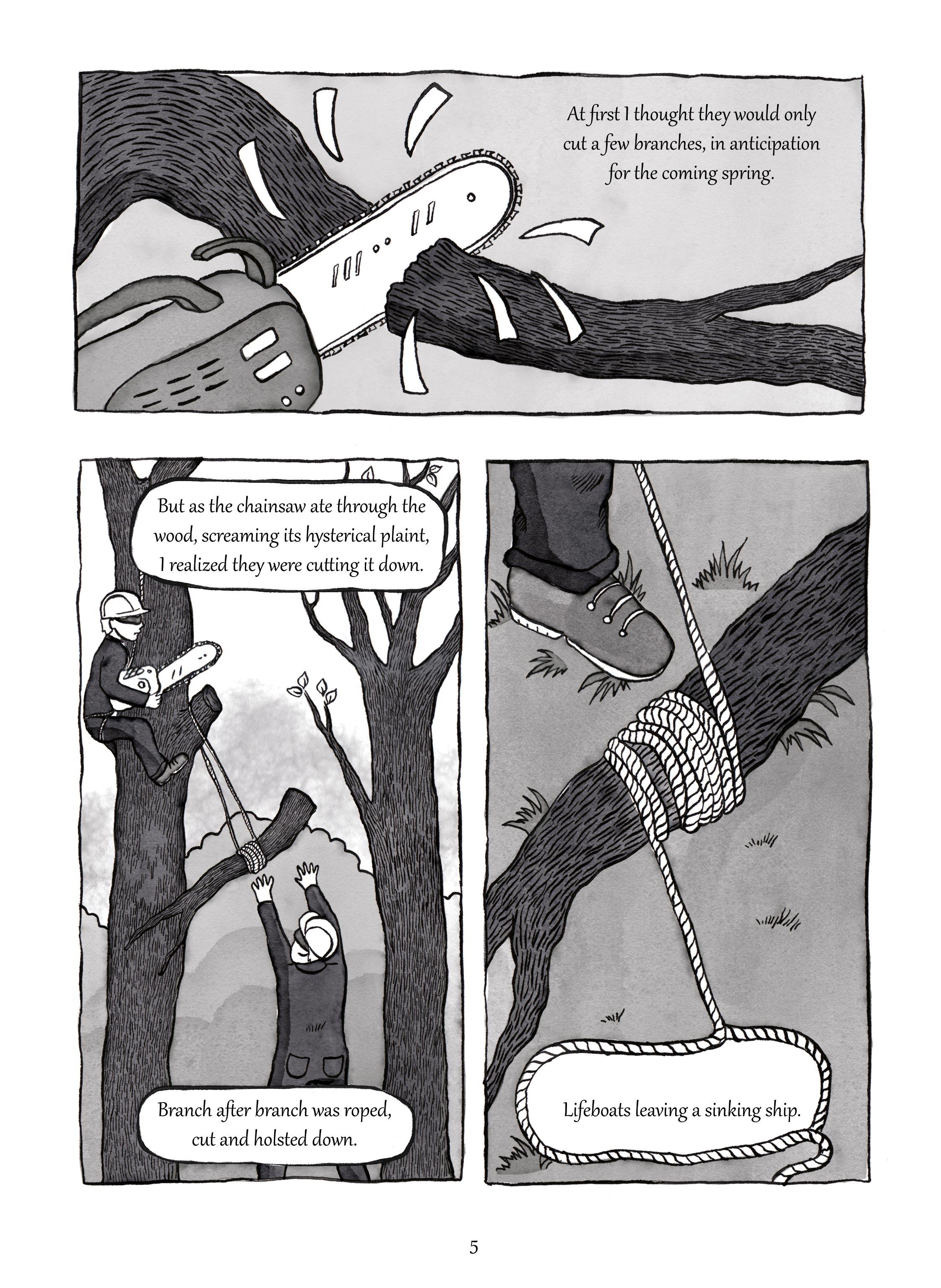 Marie-de-Beaucourt-Illustration-Two-Trees-Graphic-Novel-page5.jpg