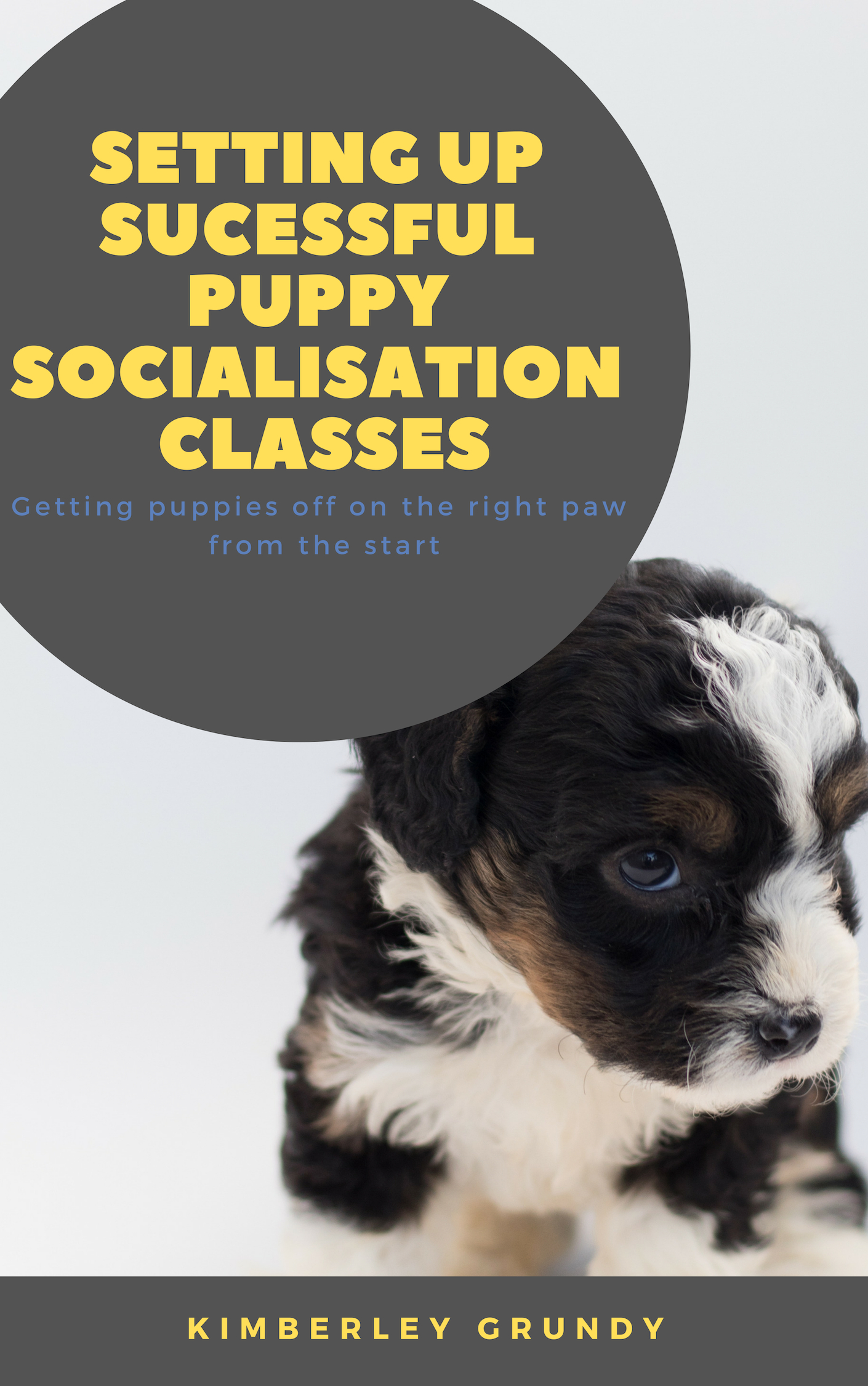 Setting up sucessful puppy socialisation classes.jpg