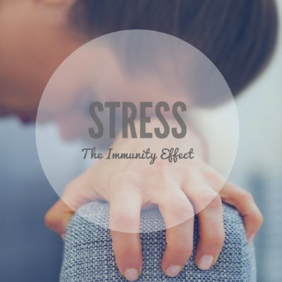 Stress blog 1.docx.PNG