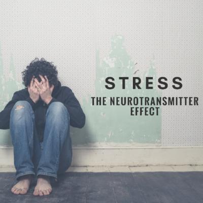 Stress Blog 3.PNG