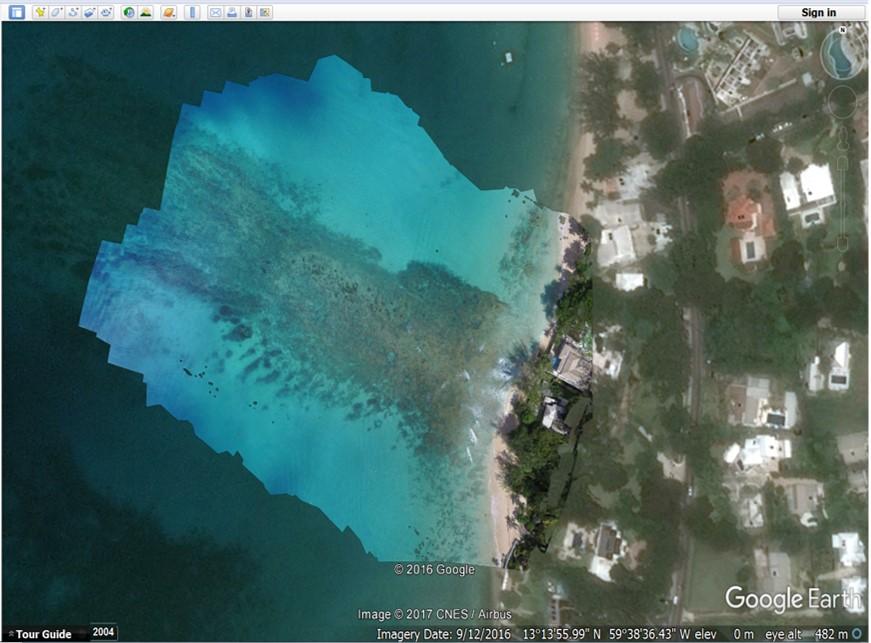 Orthomosaic - Mullins Reef, Barbados