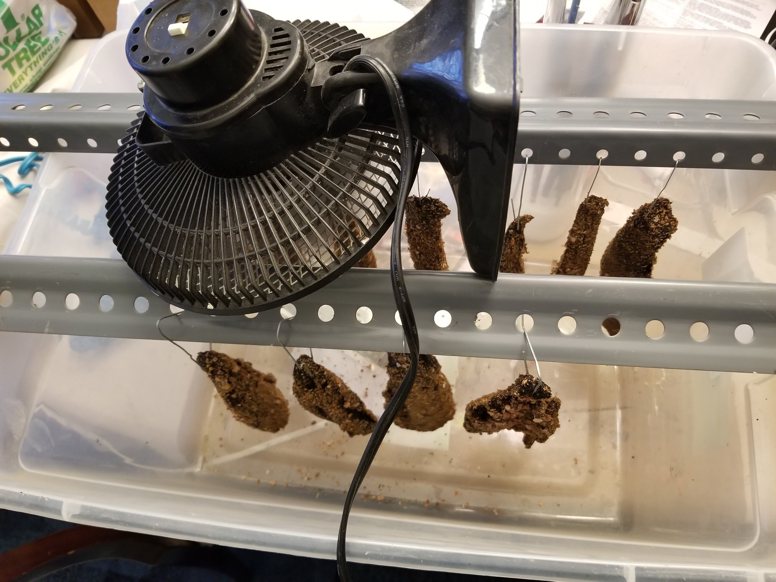 If you have a plastic bin and something to hang the Biltong from you can use this method. If this is how you choose to do the drying process just leave the meat to hang for a minimum of 4 days and as many as 10. store in a cool dry place and eat or refrigerate any steak that you cut into.