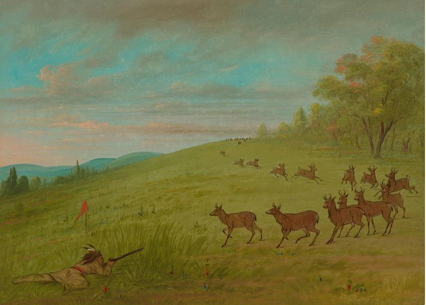"""""""Antelope Shooting"""" by George Catlin depicting an Assinneboine hunter using a flag"""