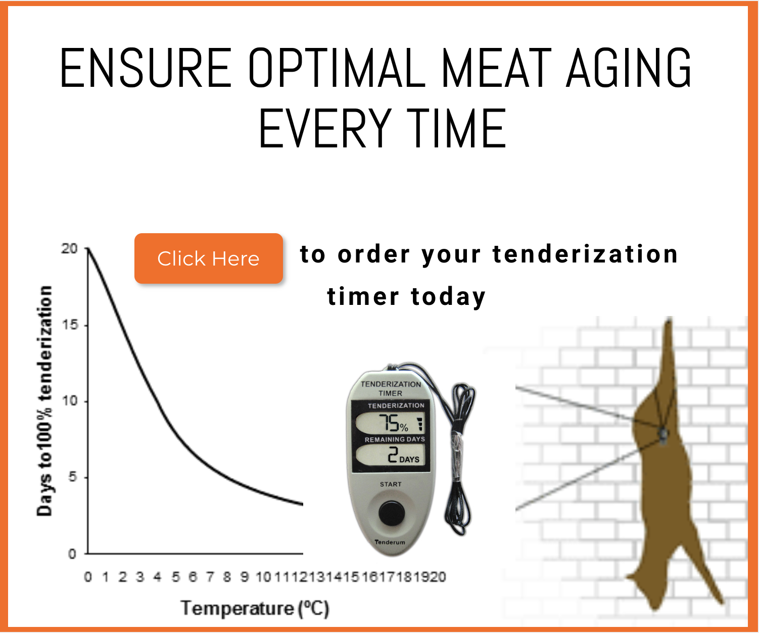 MeatTenderizationTime-Season-Sale.png