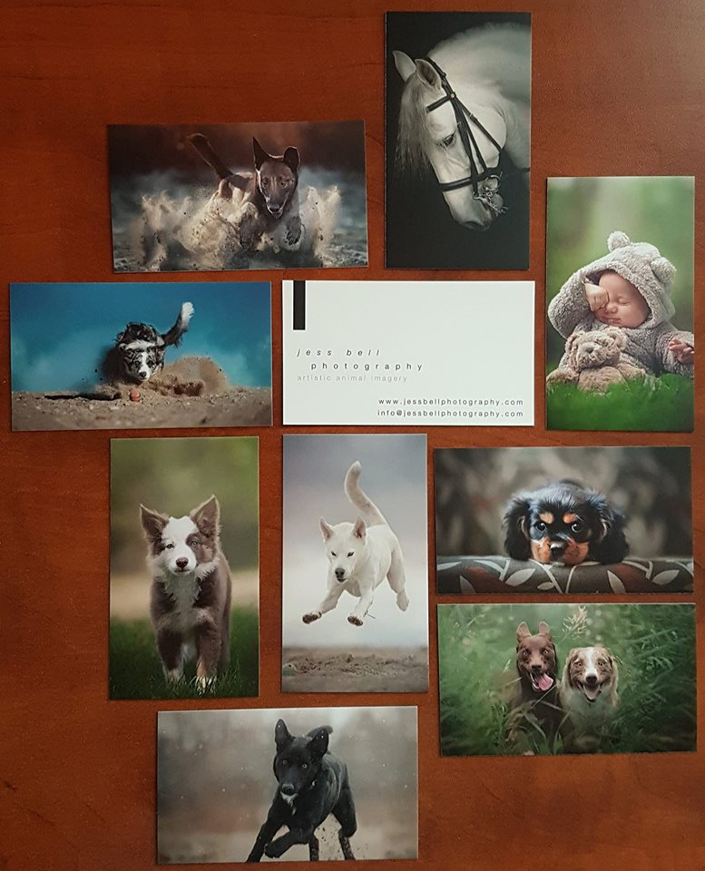 CARDS - for business and business related fun