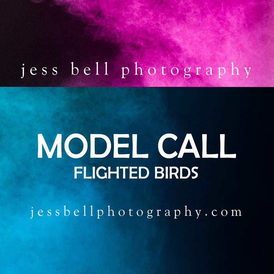 Model call - flighted birds