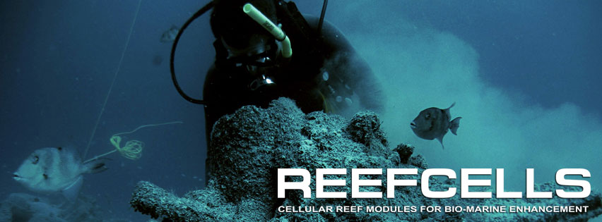 We couldn't do any of this without our incredible  Reef Builder - Christopher Xavier O'hare of Reef Cells  / CXO Art! Don't hesitate to ask us about other styles of reef modules and how we can ship them to any destination around the world to create an instant reef!