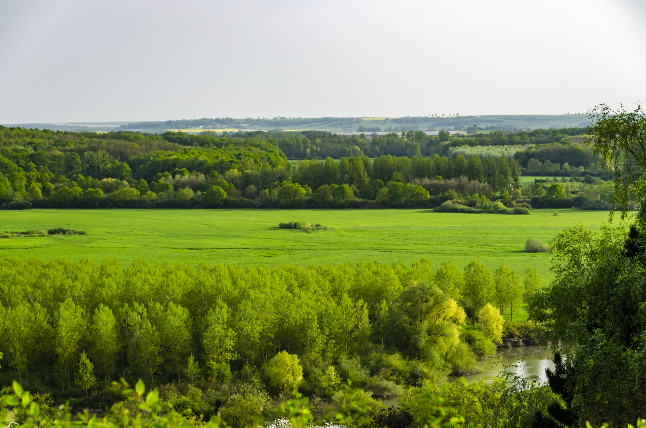 Forest Ferme Overlook at Voncq, France. Photo by Sarah Elisabeth Sawyer