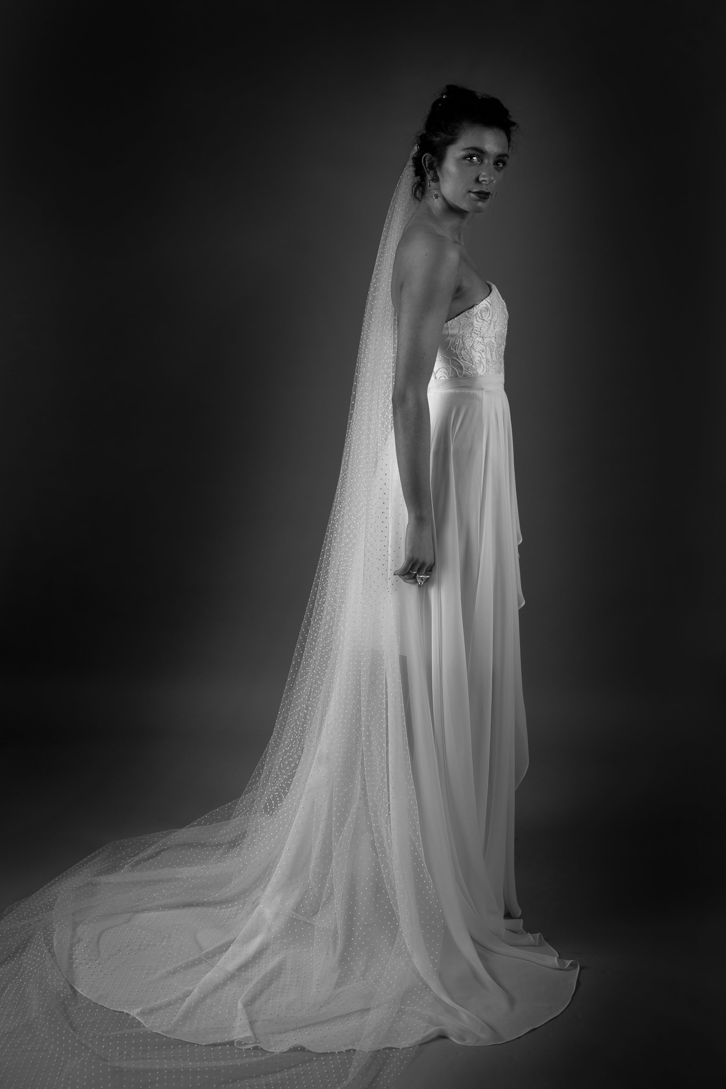 DOTTY VEIL AND BLAKE DRESS WITH ARIELLE OVERSKIRT