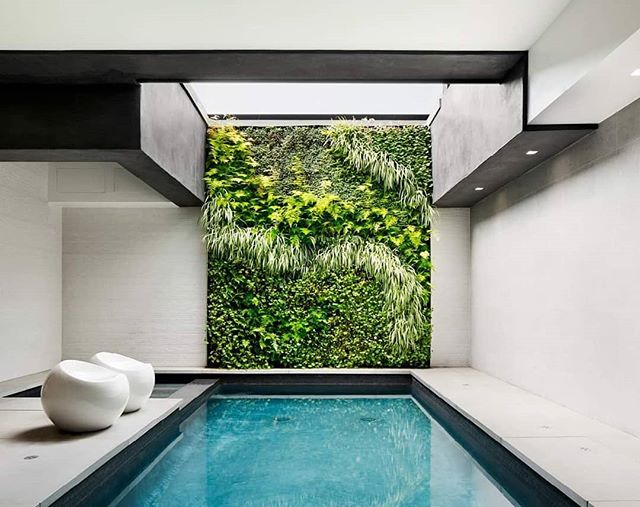 Friday inspiration: Living wall by @habitat_horticulture bringing the outside inside at a poolside retreat 💚 ________________________________________________ #livingwall #outsideinside #californianarchitecture #greenery #insoiredbynature #habitathorticulture #greenspaces #bespokeatelier