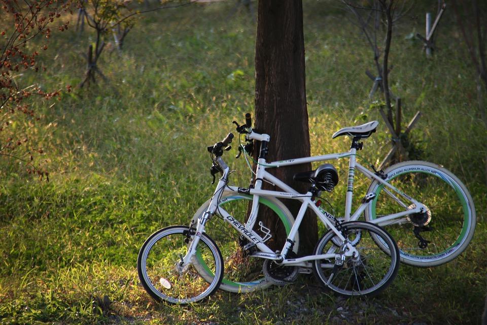 Bikes Park.jpg