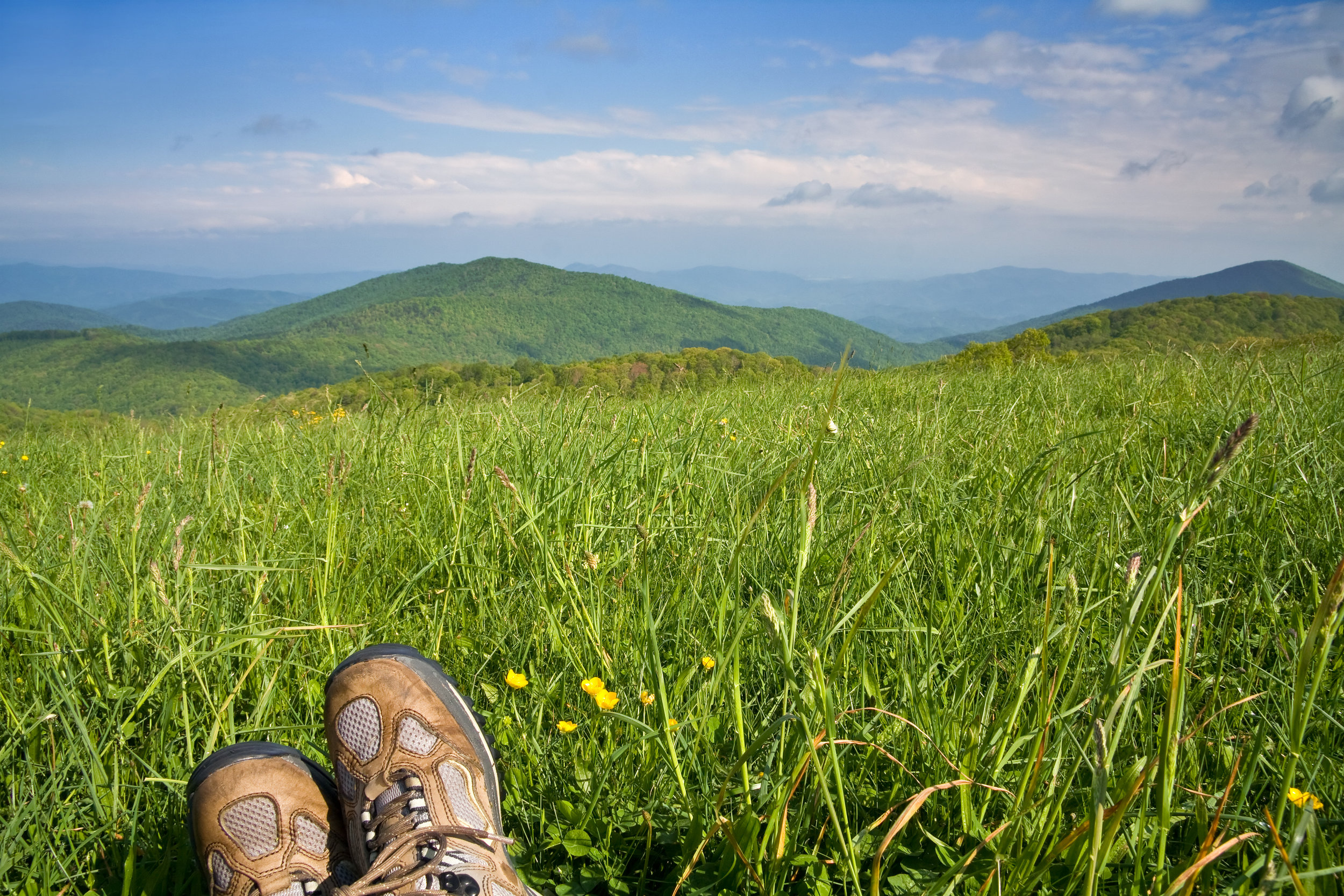 Hiker on Mountain Meadow.jpg