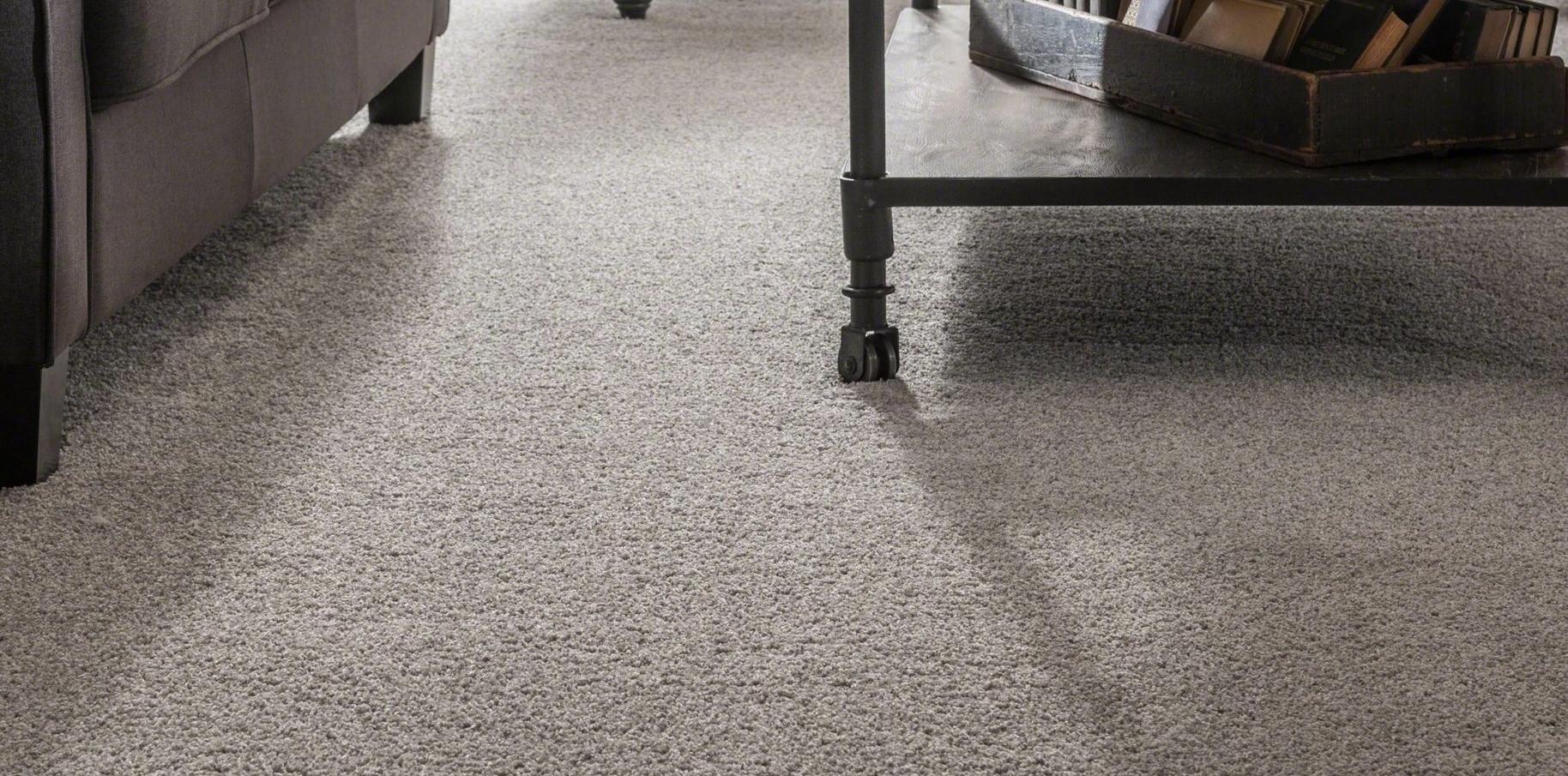 carpet 2 image.jpg
