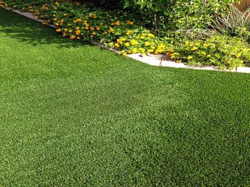 Landscape Lawns - Lush and beautiful all year! Easy to maintain!~ conserve up to 70% of your water consumption~ no more mowing, fertilizing or seeding~ hypoallergenic~ no dead spots