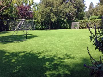 Sports Fields - Recreational or Sports use.~ low-maintenance~ durable~ enhanced traction~ shock padding to add cushion