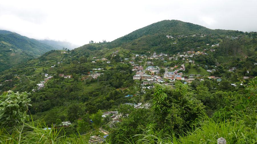 Town of Felidia