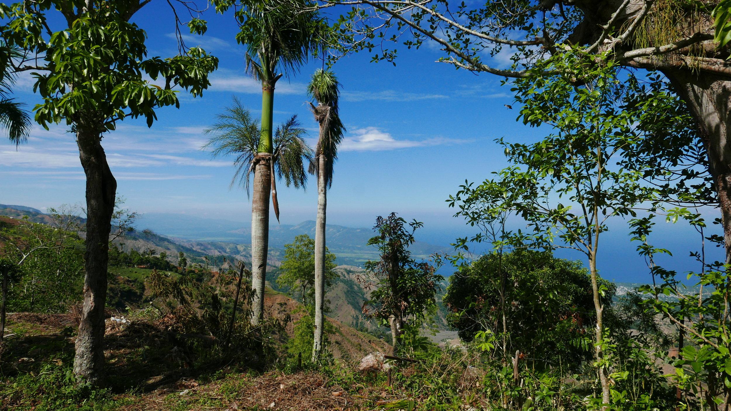 View from Vallue, Haiti.
