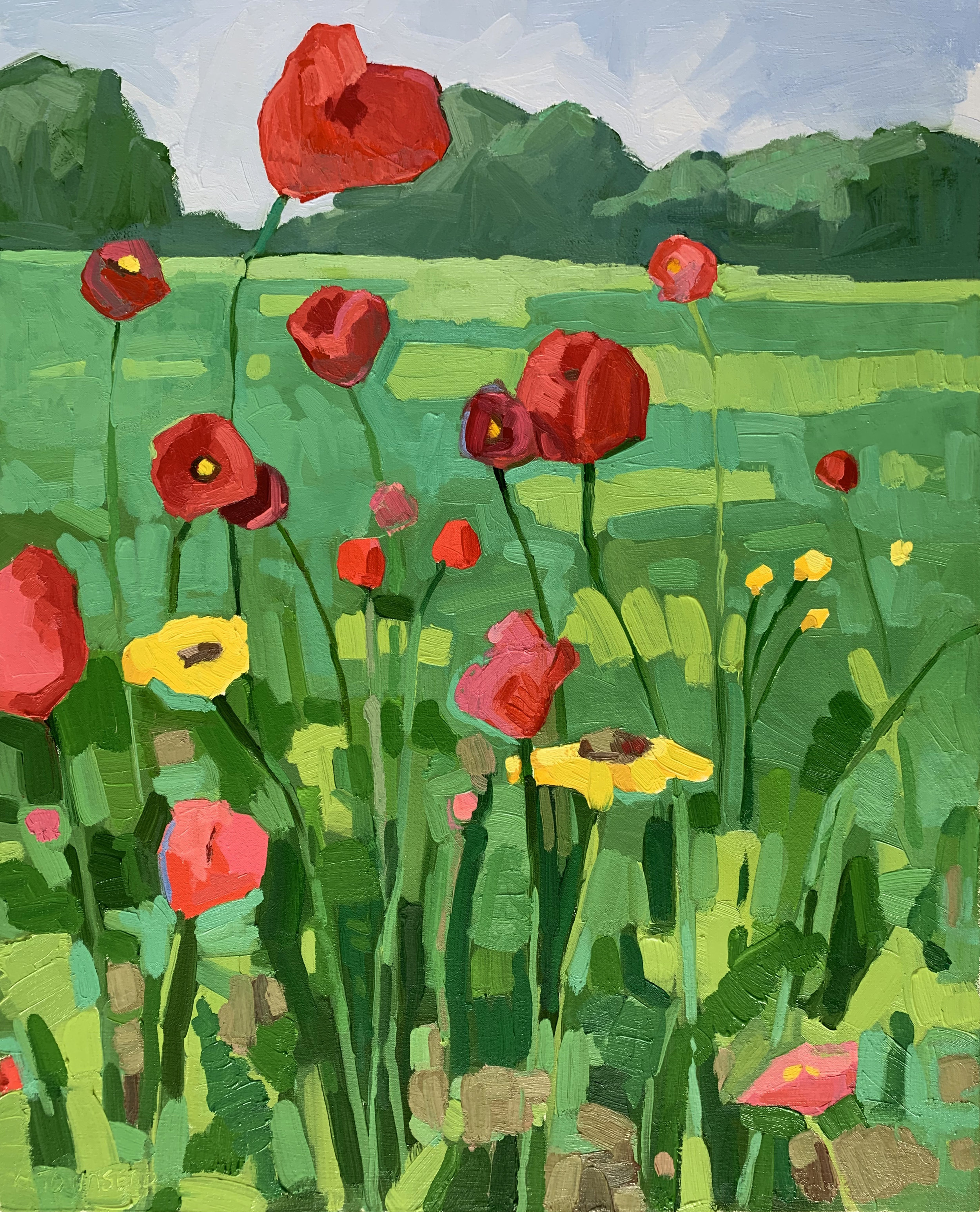 Poppy Meadow