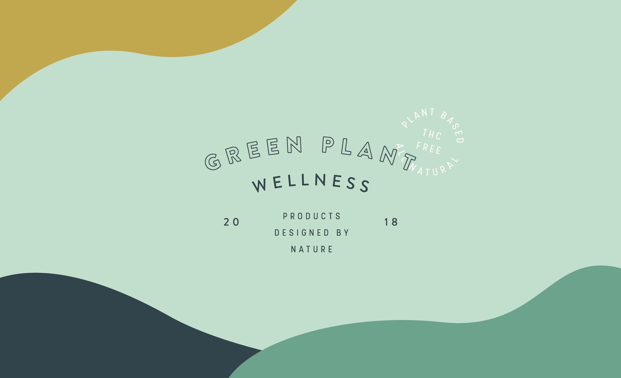 Green Plant Wellness Brand and Packaging Design by Viola Hill Studio