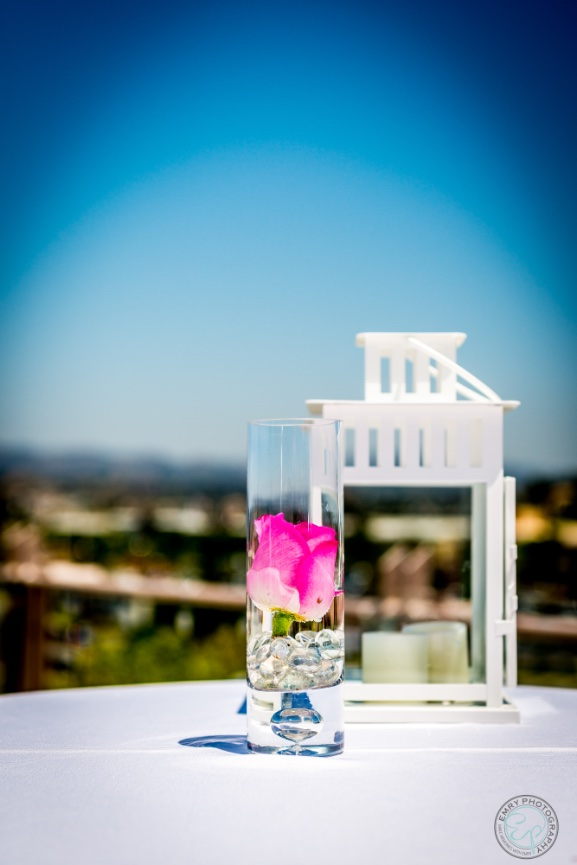 the_centre_escondido_weddings_emry_photography_0164.jpg