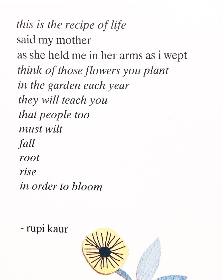The sun and her flowers quote.jpg