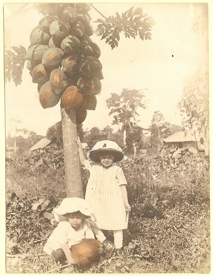 "My aunts Elizabeth and Arta Grace and a papaya tree, 1916. The papayas are called ""paw-paws"" and grow as big as watermelons in the tropics. This photo was hand-tinted by my grandmother."