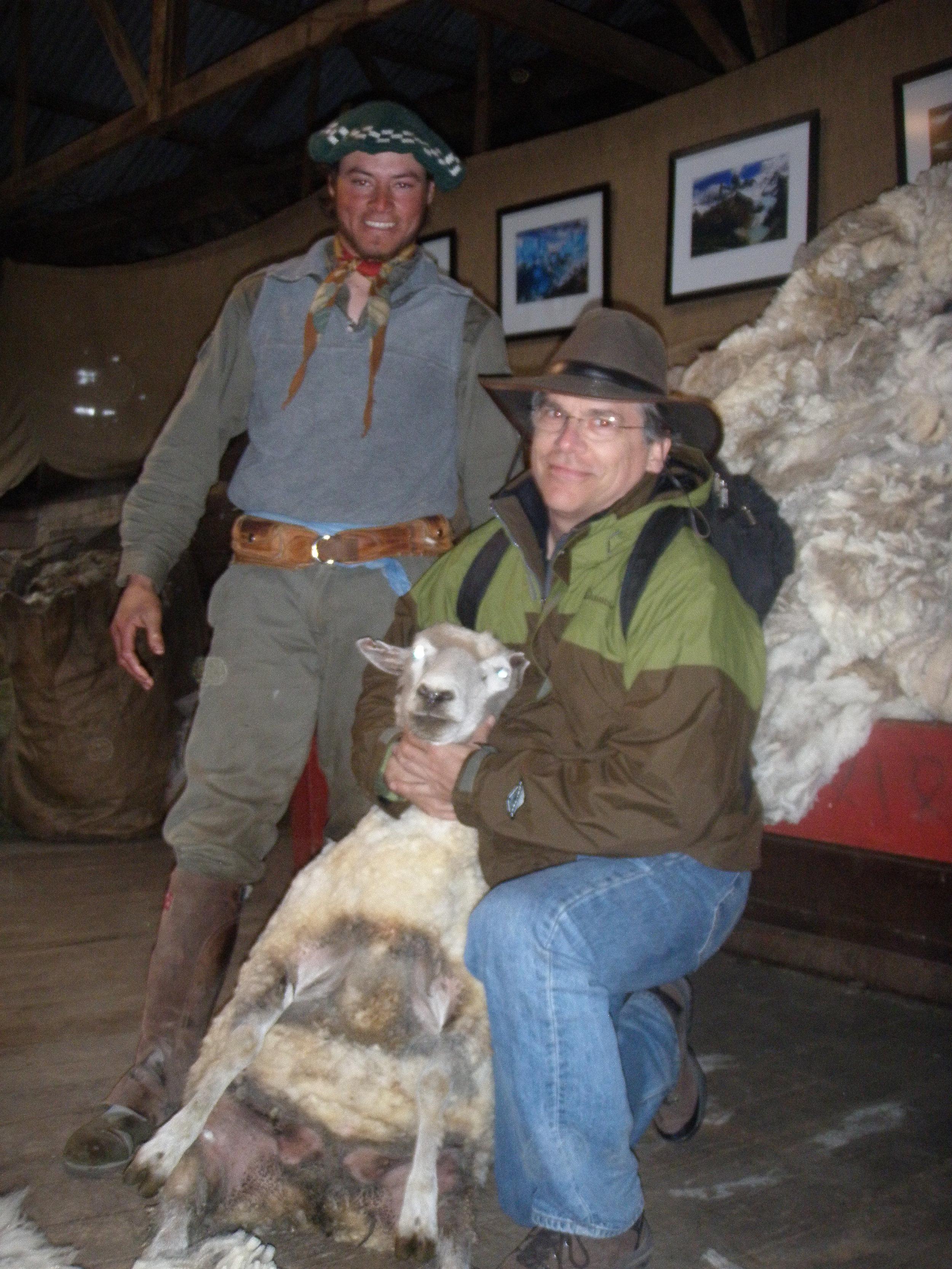 Nibepo Aike, Patagonia. Sheep shearing demonstration.