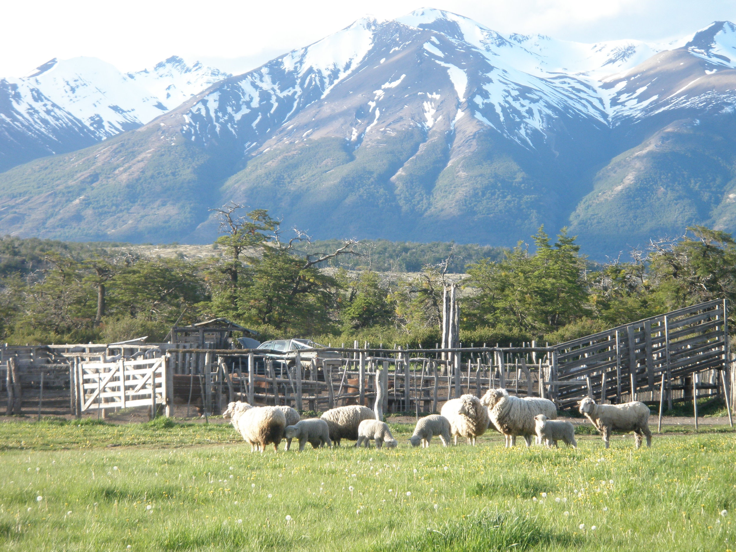 Nibepo Aike, Patagonia. An enchanted spot.