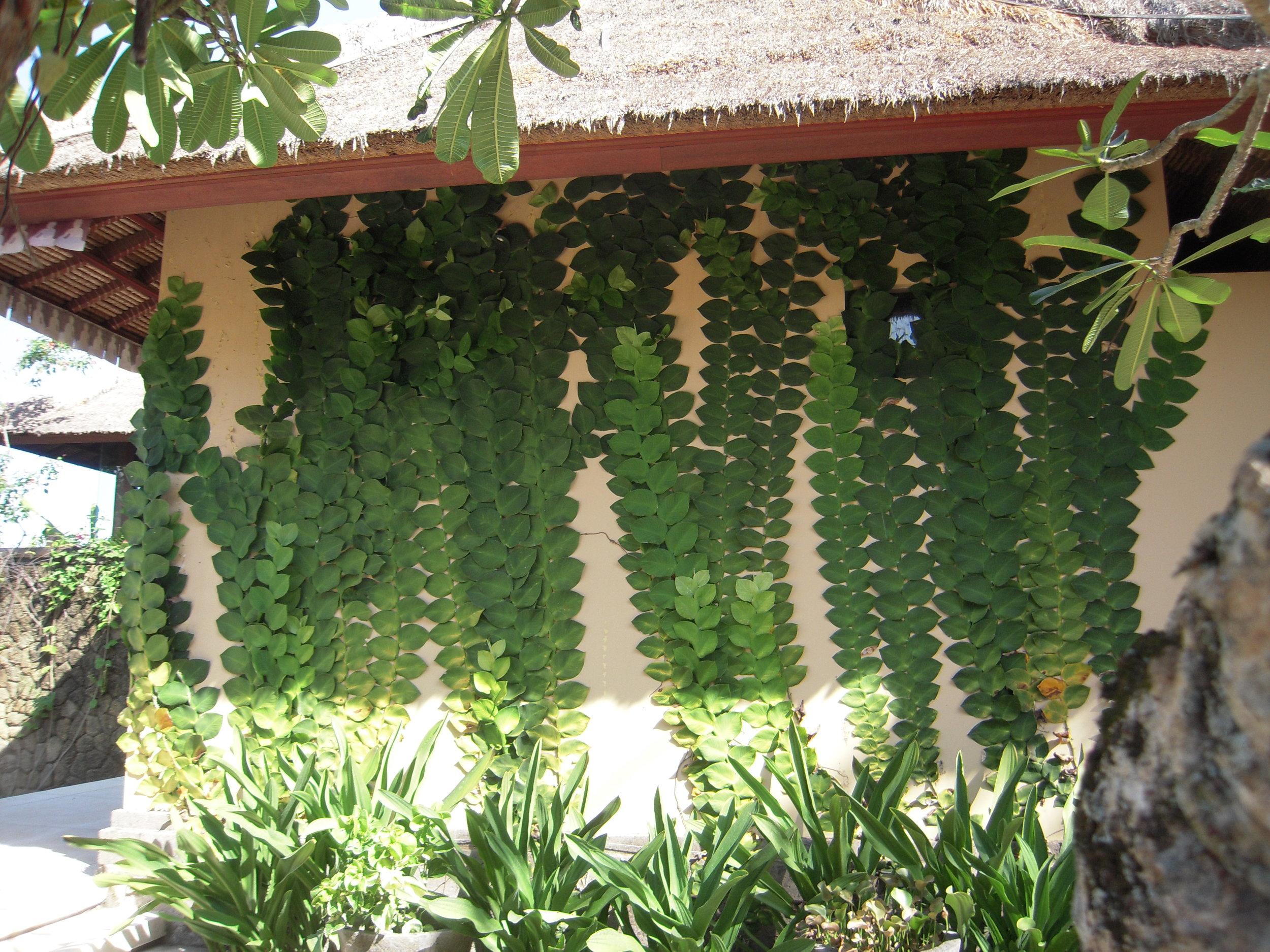 BALI 2014 -- home of Joel SInger in Sebali, near Ubud.JPG