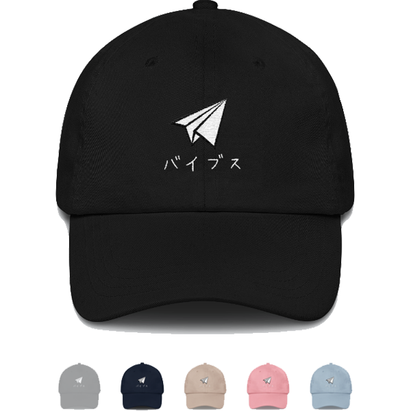 vibes apparel paper airplane dad hat.png
