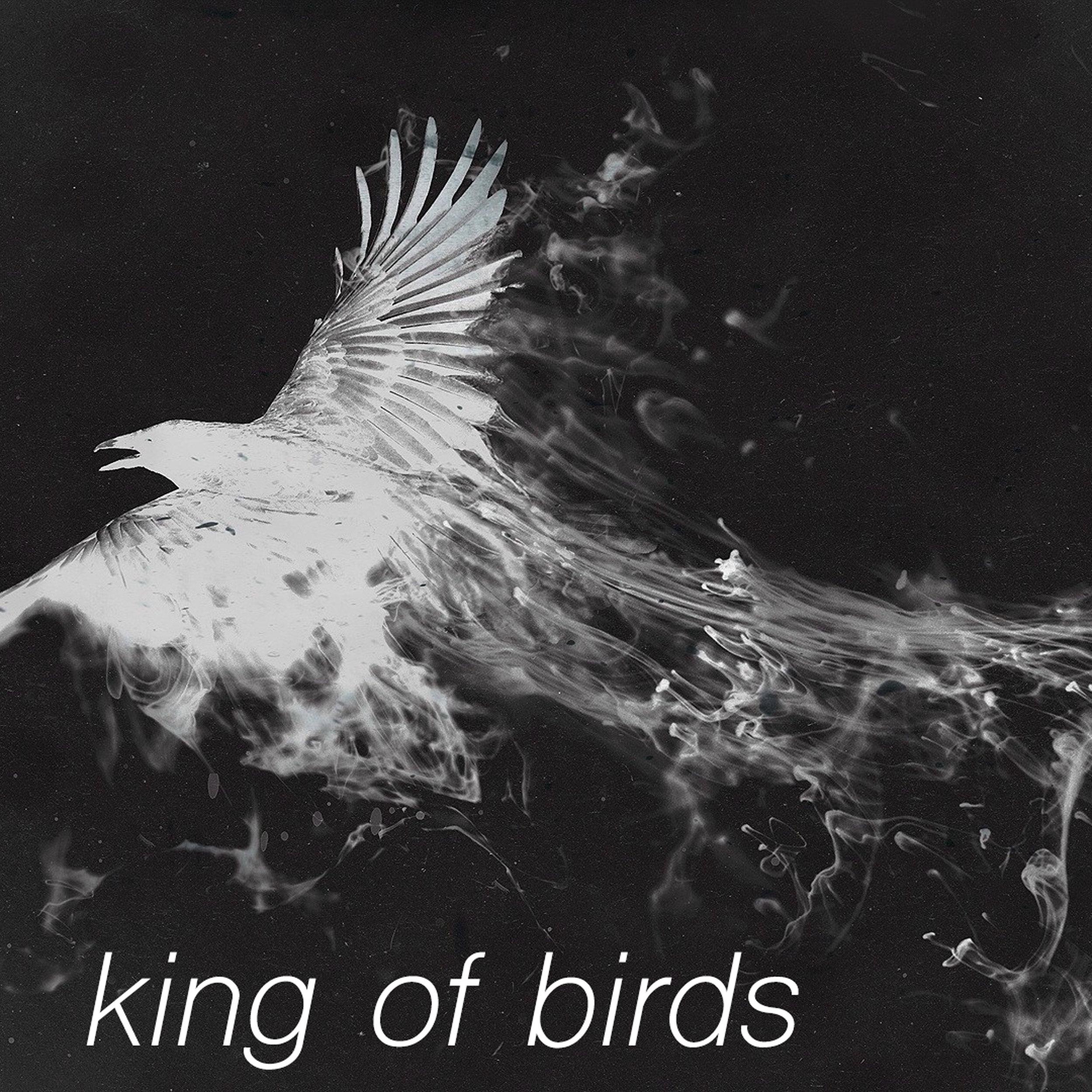 04 FlowerLight King-of-Birds new version-v-4.jpg