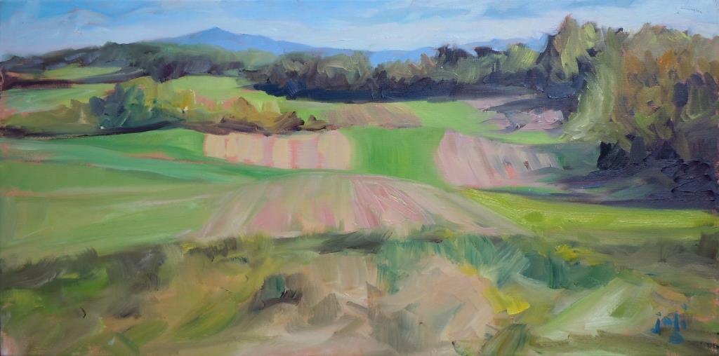 Ingram's Field, In Reverse
