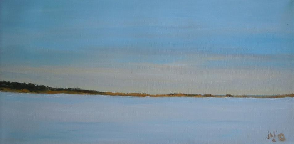 Winter, Niles Pond