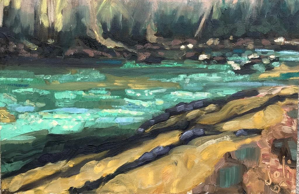 Maury Tidal Pools